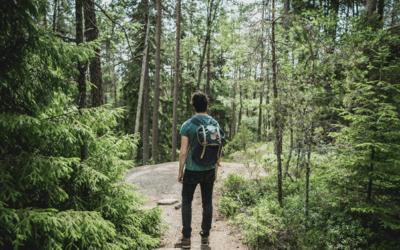 Conexiunea cu Natura: Vindecă, Încarcă și Regenerează